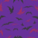 Pipistrelli su un fondo lilla per Halloween Fotografie Stock