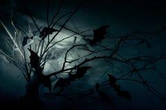 Pipistrelli sui rami Fotografie Stock