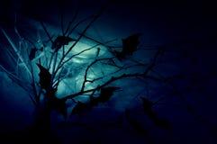 Pipistrelli sui rami Immagini Stock