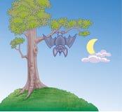 Pipistrello che pende da un albero Fotografie Stock Libere da Diritti