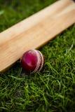 Pipistrello e palla di cricket su erba verde fotografia stock