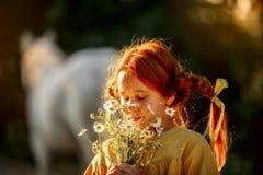 Pippi Longstocking met haar paard stock foto