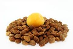 Piqûres cumulées d'abricot images stock