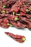Piquant dry peppers Royalty Free Stock Photo