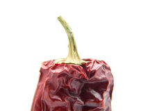 Piquant pepper Stock Photography