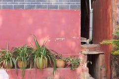 Pique la pared arruinada detrás de las plantas en el templo de Yuantong Fotos de archivo libres de regalías