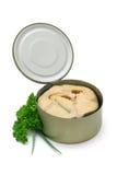 Pique los salmones Imágenes de archivo libres de regalías