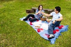 Pique-nique avec de jeunes et heureux couples au printemps images libres de droits