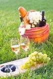 Pique-nique avec du vin blanc sur l'herbe Images stock