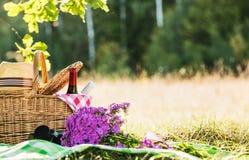 Pique-nique avec du vin rouge et blanc Images libres de droits