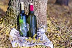 Pique-nique d'automne avec des bouteilles de vin et des verres - date romantique Photographie stock