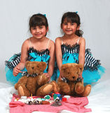 Pique-nique d'ours de nounours Images stock