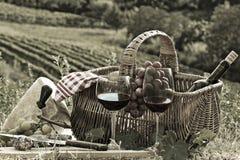 Pique-nique dans le pays Photo stock