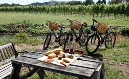 Pique-nique dans une vigne, Nouvelle Zélande Image libre de droits