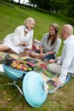 Pique-nique de barbecue en parc Photos libres de droits