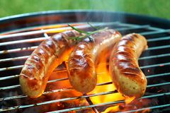 Pique-nique de barbecue sur un pré photo libre de droits