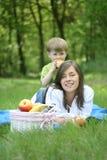 Pique-nique de famille image libre de droits