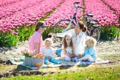 Pique-nique de famille au gisement de fleur de tulipe, Hollande photos stock