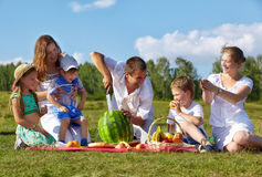 Pique-nique de famille en parc Image libre de droits