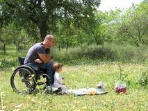 Pique-nique de fauteuil roulant photographie stock