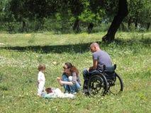 Pique-nique de fauteuil roulant Images stock