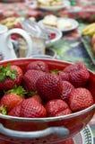 Pique-nique de fraise photo libre de droits