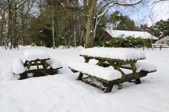 Pique-nique de l'hiver Images libres de droits