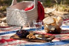 Pique-nique de plage d'été Images libres de droits