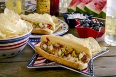 Pique-nique de vacances d'été avec les hot-dogs et les puces Photos stock