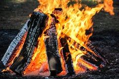 Pique-nique du feu de camp images libres de droits