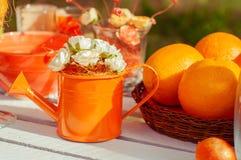 Pique-nique orange avec des fleurs et des verres d'oranges Image stock