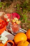 Pique-nique orange avec des fleurs et des verres d'oranges Photographie stock