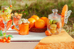 Pique-nique orange avec des fleurs et des verres d'oranges Images libres de droits