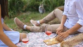 Pique-nique romantique d'un jeune couple dans l'amour dans la forêt près du lac banque de vidéos