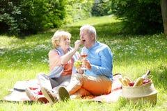 Pique-nique supérieur romantique de couples Image libre de droits