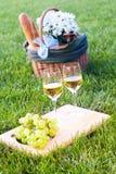 Pique-nique sur l'herbe Photo stock