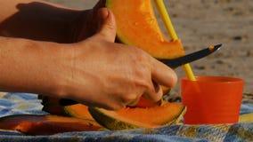Pique-niquent sur une plage de rivière - melon de coupe - 4k banque de vidéos