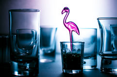 Pique o flamingo Imagem de Stock