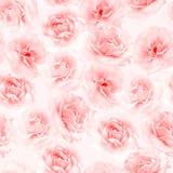 Pique o teste padrão sem emenda das rosas Imagens de Stock