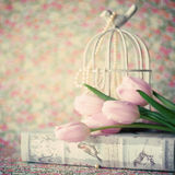 Pique tulips Imagens de Stock Royalty Free