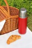 Piquenique com termos vermelhos Foto de Stock Royalty Free
