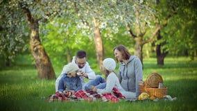 Piquenique da família no parque na grama filme