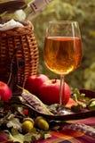 Piquenique do outono com vinho branco, maçãs e uma cesta Fotos de Stock Royalty Free