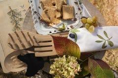 Piquenique do outono em um jardim Fotos de Stock Royalty Free