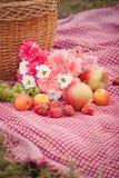 Piquenique do outono na natureza Fotografia de Stock