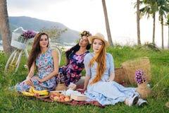 Piquenique em um campo Grupo de amigos que têm o piquenique em um parque em um dia ensolarado Imagens de Stock