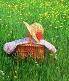 Piquenique na grama verde Imagens de Stock Royalty Free