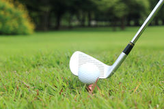 Piquer dans un jeu du golf Image stock