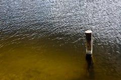 Piquete de madera en el lago Foto de archivo libre de regalías