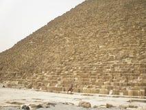 Pirámide de Cheops y del camello Fotos de archivo